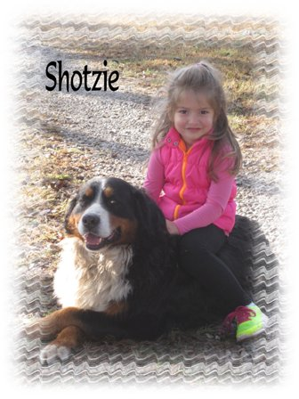 cassie-and-shotzie